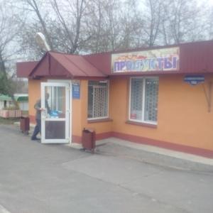 Продается продуктовый магазин в Мозыре