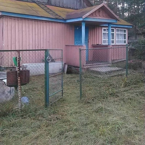 Продам дом в д.Борисковичи в 8 км от г. Мозыря 70 соток приват. земли.