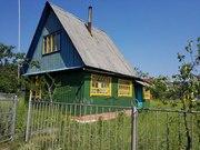 Продам дачу в Мозырском районе (в садовом товариществе Загорины)